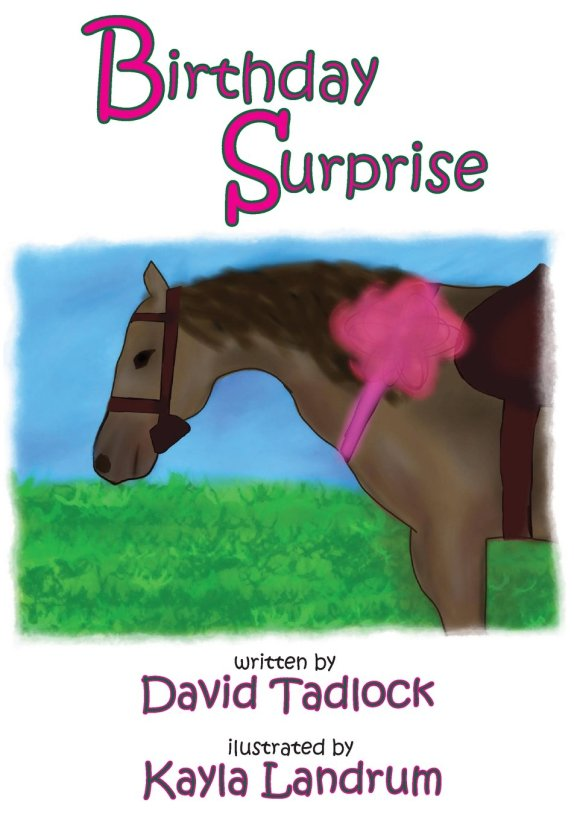 Birthday Surprise Bookcover1